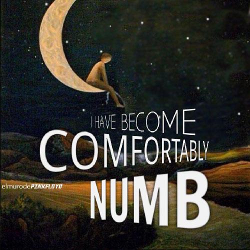 دانلود آهنگ Pink Floyd به نام Comfortably Numb